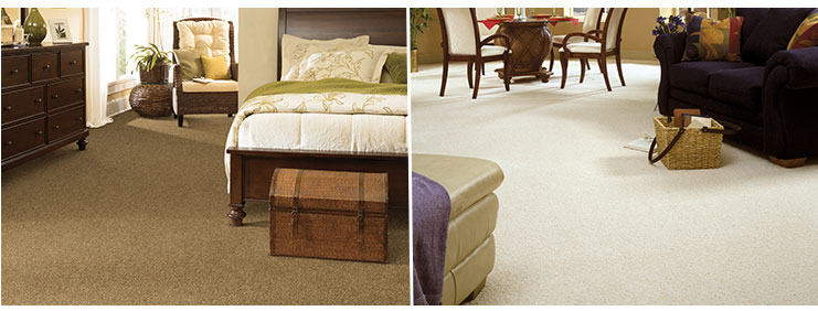 tigressa softstyle carpet rooms