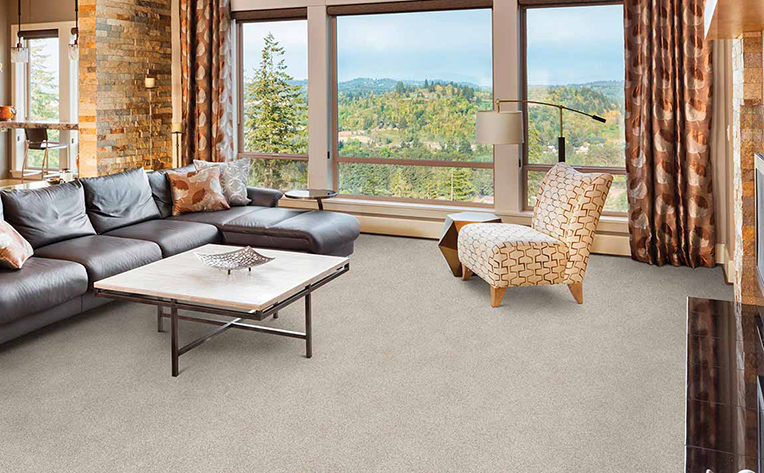 Durable beige carpet in a living room with a view of the mountains